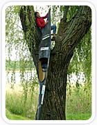 Birgit Fischer in einer Astgabel mit Kanu